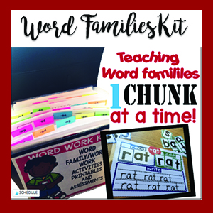 Word Work-Word Families-CVC